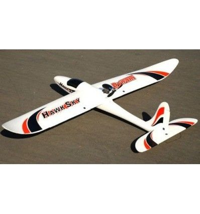Dynam Hawk Sky RC 4CH Brushless